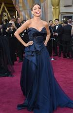 Sofia Vergara attends the 88th Annual Academy Awards on February 28, 2016 in Hollywood, California. Picture: AP