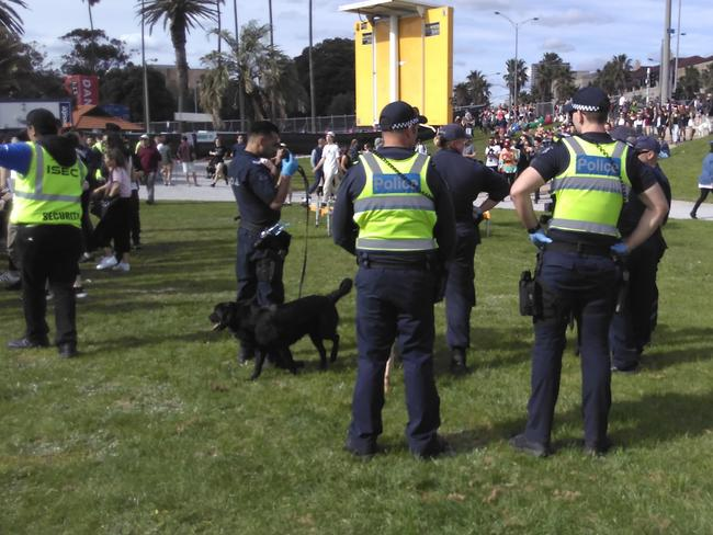 Listen Out festival 2017: Sniffer dogs help bust 24 St Kilda