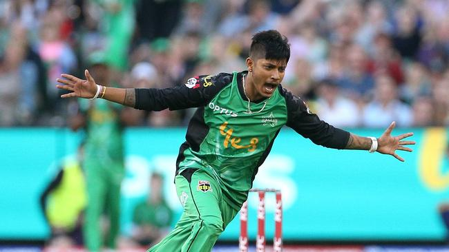 Sandeep Lamichhane was a revelation for Melbourne Stars last summer.