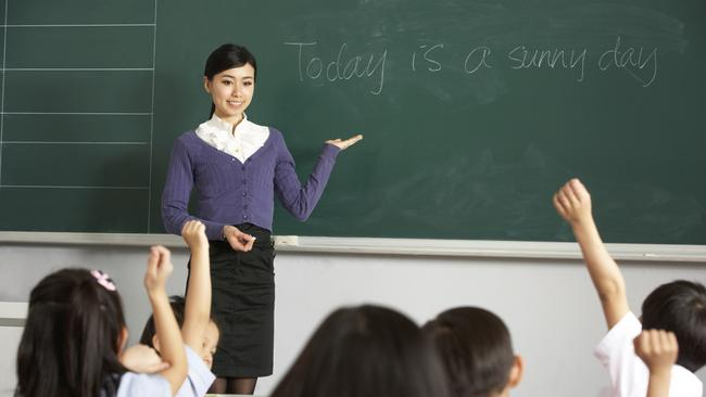 the federal government is considering making primary school teachers subject specialists
