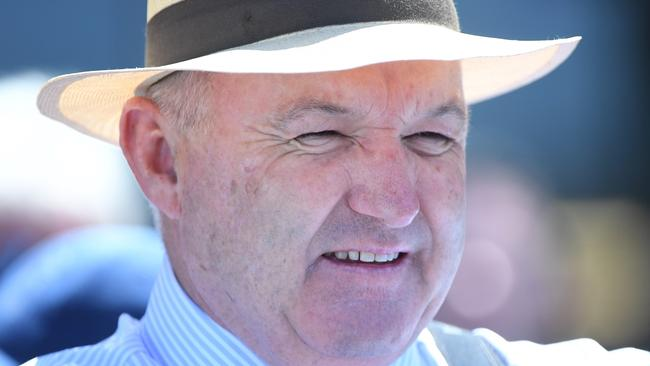 Trainer David Hayes has four runners in the Feehan Stakes, while his son Will could get a start for the Western Bulldogs this weekend. Picture: AAP