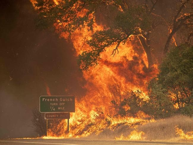 Trees burst into flame during the Carr fire near Whiskeytown, California. Picture: AFP
