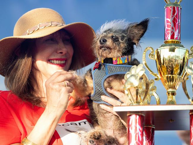Scamp the Tramp with his trophy. Picture: Josh Edelson/AFP