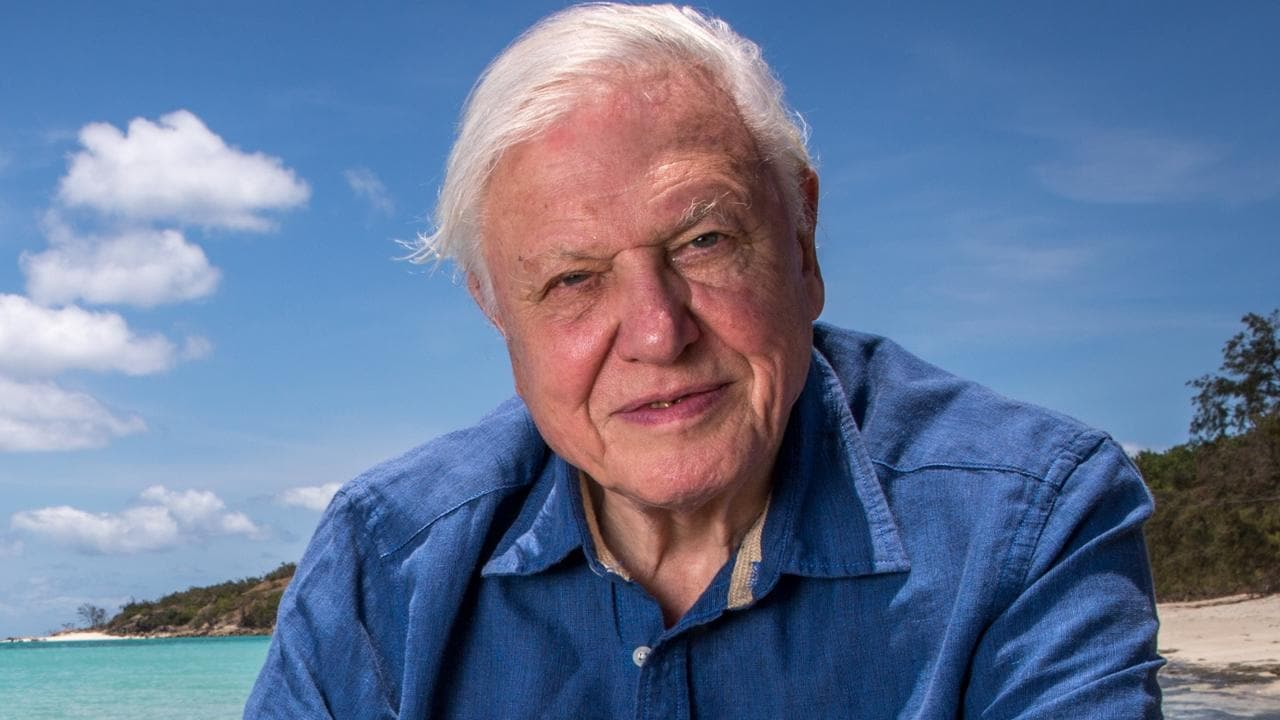 Attenborough a fool on climate fearmongering