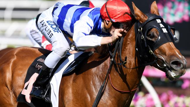 Jockey Regan Bayliss and Redkirk Warrior combine to win the Black Caviar Lightning in February. Picture: AAP