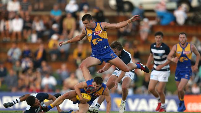 Despite still harbouring feelings of anger towards West Coast after last year's Grand Final, Elliot Yeo may have jumped into Paige Cardona's SuperCoach team.