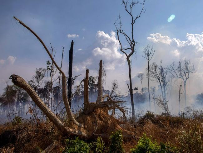 View of a burntout area after a fire in the Amazon rainforest in Brazil. Picture: AFP