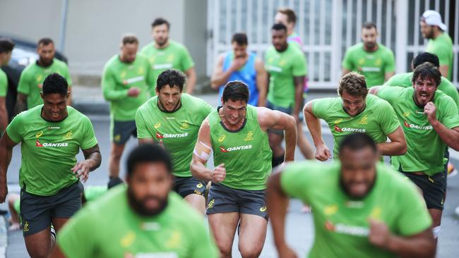 The Wallabies tackle a hill run in Sydney's Rushcutters Bay.