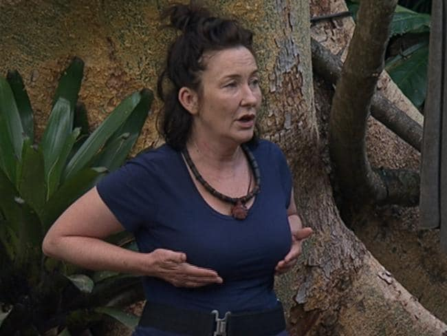Fiona O'Loughlin talking about alcoholism and how she used to hide small bottles of vodka in her bra. Picture: Ten