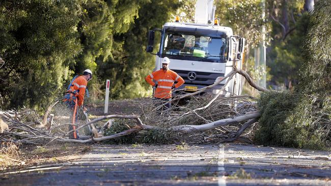 TasNetworks crews work on a fallen tree close to Hobart. Picture: RICHARD JUPE