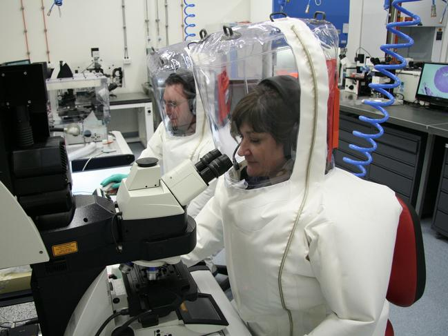 Scientists at the Australian Animal Health Laboratory.