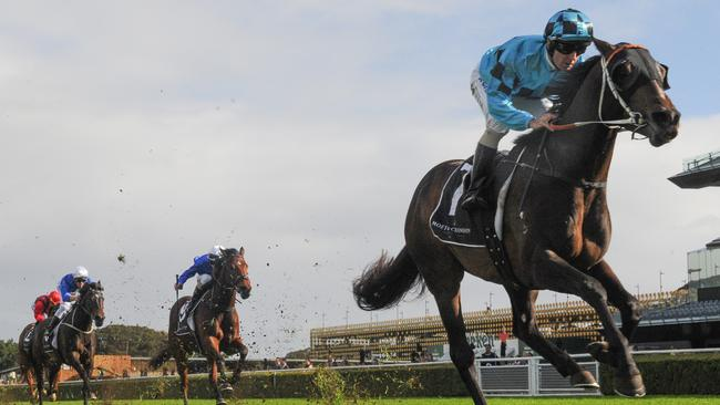 Seasr scored a dominant win in the Winter Dash. Picture: AAP