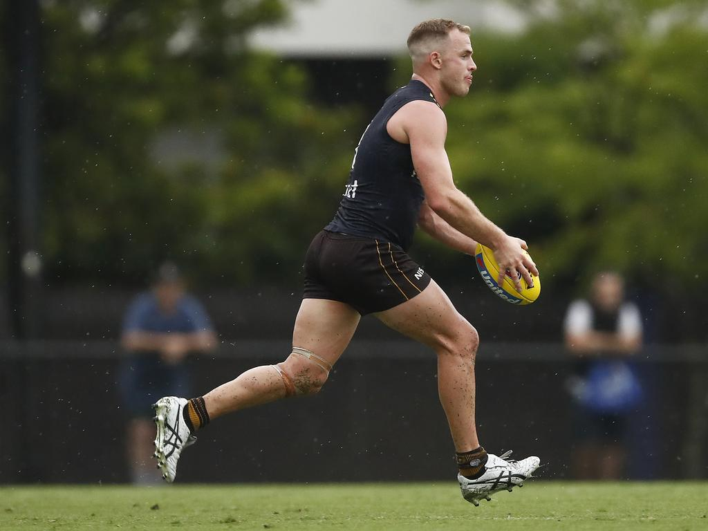 Hawthorn fans were pleased to see Tom Mitchell back on the field. Picture: Daniel Pockett