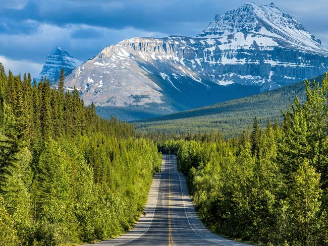The Icefields Parkway running through dense forest at base of Mount Sarbach, Banff National Park, Alberta, Canada. Picture: iStock