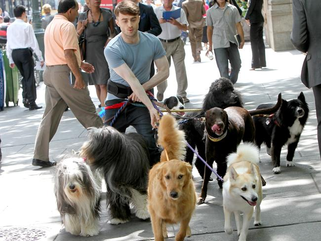 Daniel Radcliffe filming a scene for Trainwreck in Bryant Park, New York City.