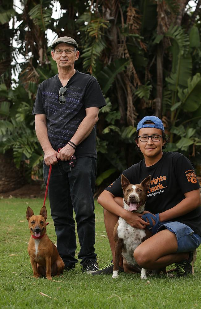 Dog Behaviour Training Inner West