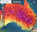 BOM forecast screenshot for Sunday 29/11/20