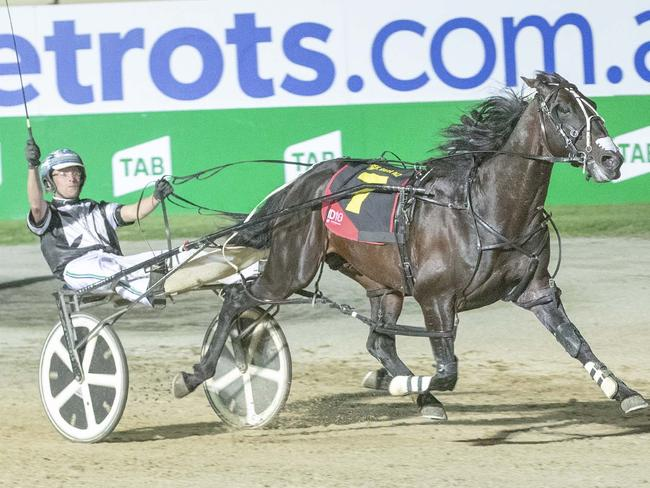 Driver Todd McCarthy raises his whip as Tiger Tara races to a dominant victory. Picture: Stuart McCormick
