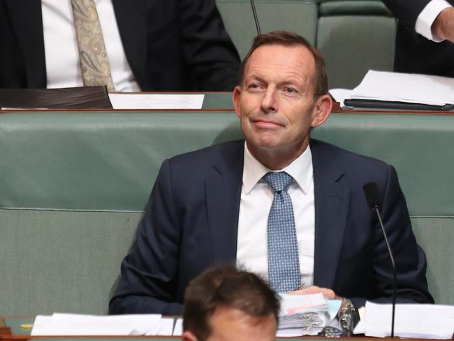 "Tony Abbott says he is ""playing it straight"". Picture: Kym Smith"
