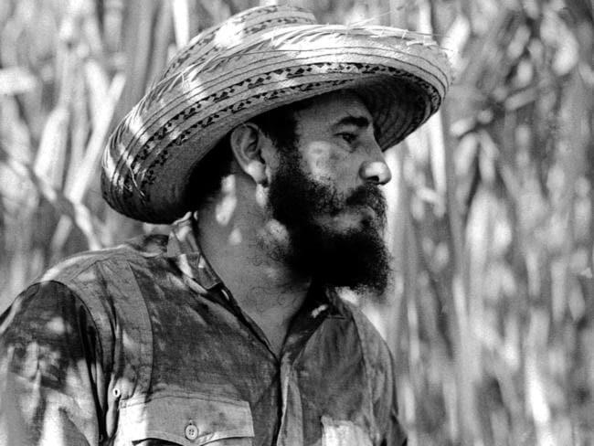Fidel Castro stands on a sugar cane plantation in Cuba. Picture: Roberto Salas/Prensa Latina via AP Images