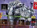 Rhino Room. Frome Street, Adelaide. Photo: Trentini Priori.
