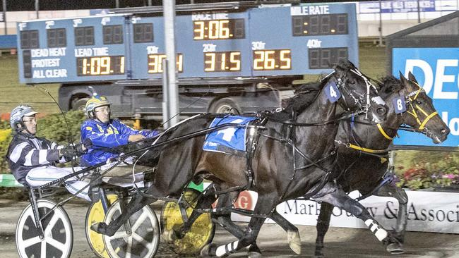 Tiger Tara (4) and driver Todd McCarthy defeat Our Uncle Sam in their heat. Picture: Stuart McCormick