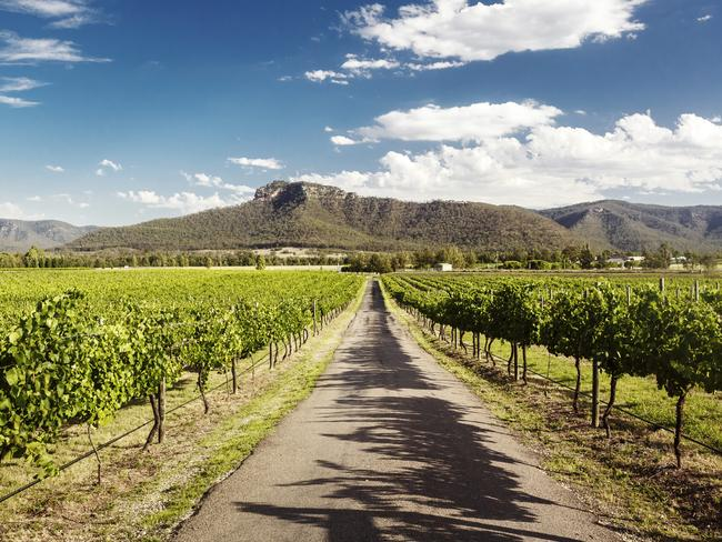 One of the great wine regions of the world: the Hunter Valley. Picture: iStock
