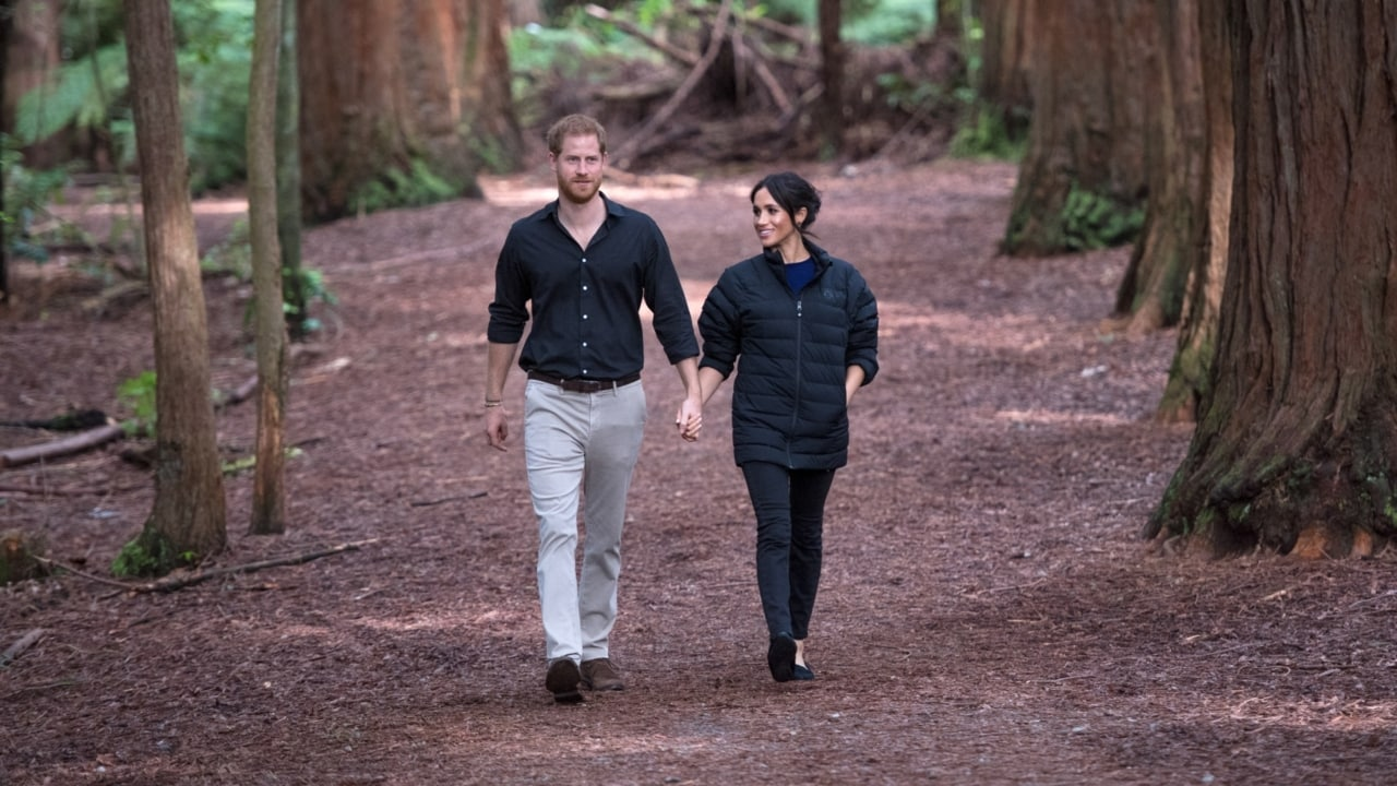Prince Harry launches sustainable travel program