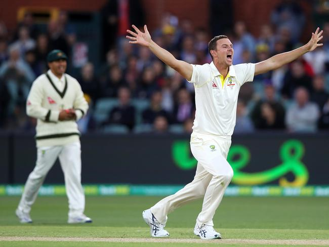 Josh Hazlewood appeals for lbw during day four of the second Test.