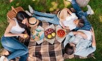 How to perfect the family picnic