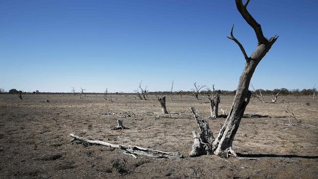 This dry lake bed of Tandure Lake shows the stark reality of Australia's current drought. Picture: Rohan Kelly.