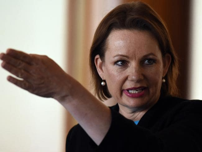 Minister for Health Sussan Ley. Picture: AAP Image/Mick Tsikas
