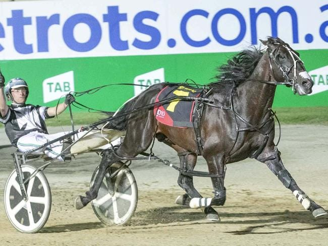 Tiger Tara, winning the 2018 Inter Dominion, returns in a Menangle free-for-all on Saturday night. Picture: Stuart McCormick