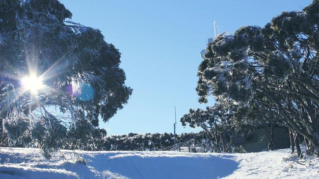 Snowy conditions at Mt Baw Baw earlier this week.
