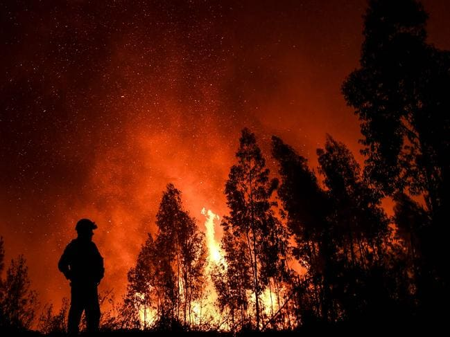 A firefighter monitors the progression of a wildfire at Amendoa in Macao, central Portugal. Picture: AFP