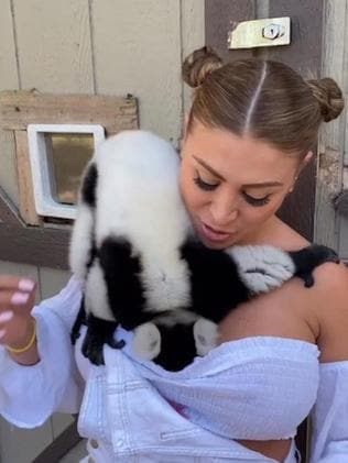The Lemur got a little curious during the model's visit to the zoo. Picture: JamPress