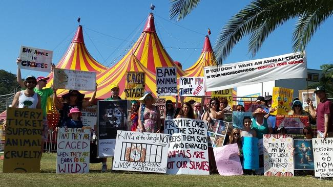 A recent protest outside Stardust Circus in Gosford. This site is becoming increasingly familiar.