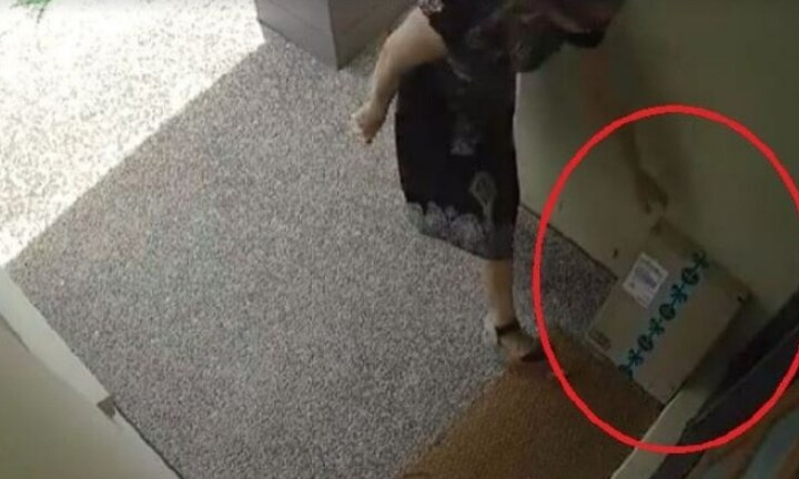 The sneaky woman then grabbed the package off the doorstep in the middle of the day. Source: Facebook