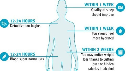 dry july what happens to your body when you quit drinking