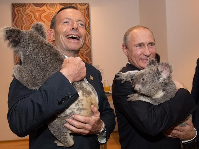 All smiles...Abbott and Putin put on a happy display while getting up close to two koala's. Picture:Andrew Taylor/G20 Australia via Getty Images