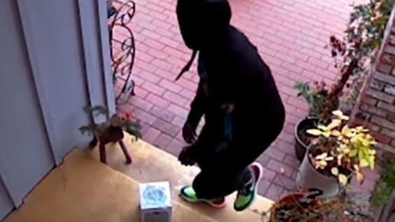 Mark Rober came up with the elaborate scheme after a package was stolen from his doorstep.