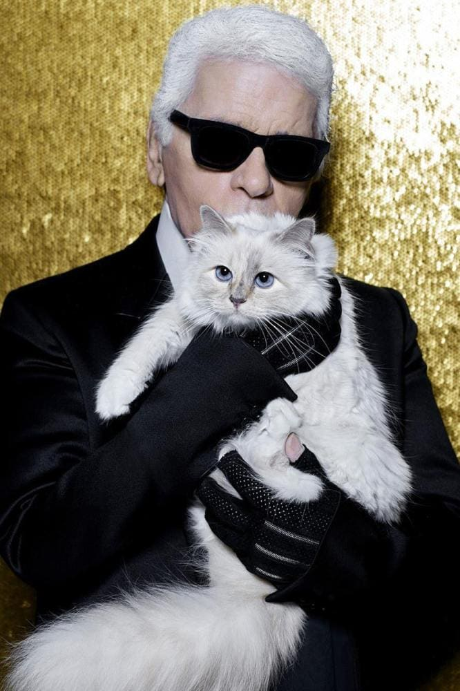 What will happen to Choupette now that Karl Lagerfeld has died?