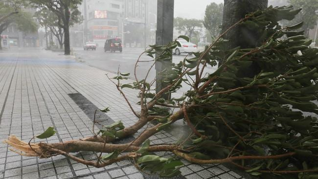 Trami packed maximum gusts of 216km/h at its height downing trees like this one in Naha, Okinawa prefecture. Picture: AFP