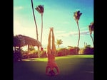 Alessandra Ambrosio snapped doing a headstand on vacation in Hawaii. Picture: Instagram
