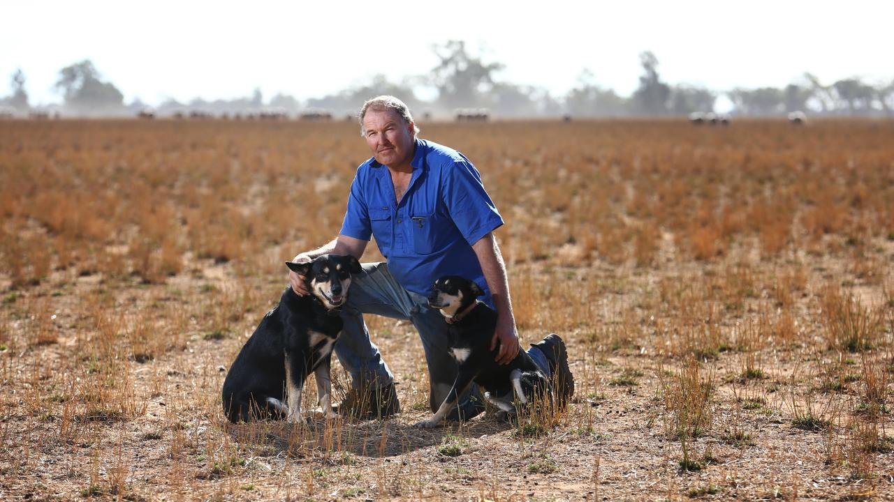 Wayne Brabrook with his dogs on his farm west of Dubbo in western NSW. Picture: Britta Campion