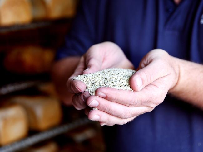Hemp seeds have been legal here for a number of years, but weren't allowed to be added to food. But that law is now changing, with many businesses such as Alpine Breads in Benalla planning to add it to their products. Picture: Chloe Smith.