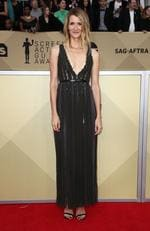 Actor Laura Dern attends the 24th Annual Screen Actors Guild Awards at The Shrine Auditorium on January 21, 2018 in Los Angeles, California. Picture: Frederick M. Brown/Getty Images