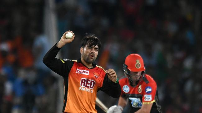 Rashid Khan will get more opportunities to celebrate taking the wicket of AB Devilliers — pictured here doing so in the IPL — when they take each other on again in the Big Bash League