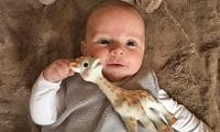 The surprising reasons why Sophie the Giraffe is Queen Of The Toys