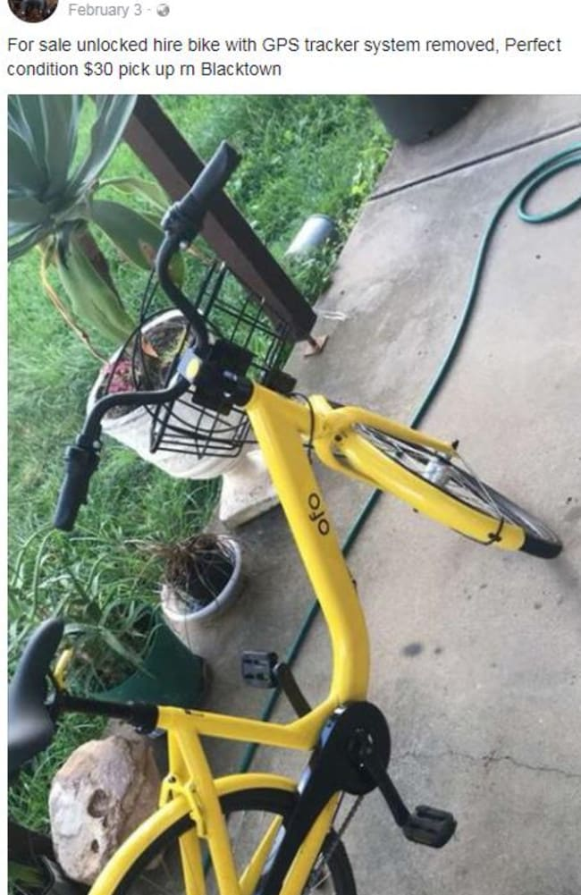 A man selling an O-Bike for $30.